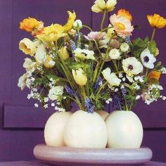 Ostrich eggs as vases