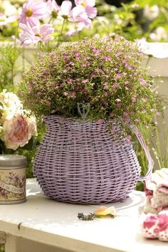 Pretty painted basket of blooms Hanging Baskets, Wicker Baskets, Flower Basket, Flower Pots, Beautiful Gardens, Beautiful Flowers, Lavender Cottage, Planting Flowers, Floral Arrangements