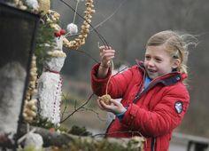 Zelf een vetbol maken | Natuurmonumenten