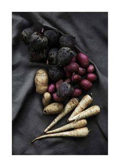 Vegetables From The Garden Plakat