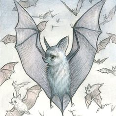 Aaaand it's BAT DAY!! Drawlloween Day 14 is my very favorite animal -bats! I am SO proud of everyone who has made it this far - two weeks is awesome!  #mabsdrawlloweenclub #batart #bat #drawlloween