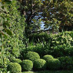 Outdoor Rooms, One Design, Landscaping, Bungalow, Garden, Plants, Profile, Inspiration, Instagram