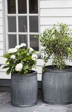 11 ways to create a charming country-cottage-style garden - Large Outdoor Planters, Large Garden Pots, Large Plant Pots, Tall Planters, Outdoor Pots, Outdoor Flowers, Outdoor Gardens, Front Door Plants, Style Cottage