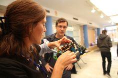 Puesta a punto de todos los robots para recibir los niños en las #JHAlm de El Ejido 2015. #MomandGeek, #GenteQueHaceCosas, #programación, #robótica