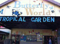 Butterfly World in Klapmuts