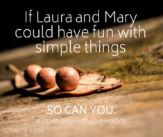 100+ GREAT BOOKS!  Great books like LITTLE HOUSE IN THE BIG WOODS teach great character and coping skills. We're two sisters who bring great books to life for kids, and we can help you do that too!  Come visit us at LitWits.com to get our unique activity ideas and teaching tools. #homeschool #classroom #booksforkids  #character