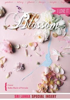 N 12 Spring 2016 Blossom zine Pastel pink flowers / Hello Spring + Sri Lanka Special Insert Paper Snowflake Patterns, Paper Snowflakes, How To Make Decorations, E Magazine, Hello Spring, Floral Fashion, Botany, Pastel Pink, Spring 2016