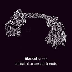 Daily Blessings ~ Blessed be the animals that are our friends. Art by Cassandra Oswald Words by Briana Saussy View the collection: http://brianasaussy.com/daily-blessings/