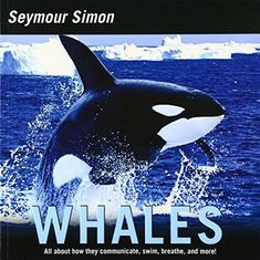 Whales (Smithsonian-science) by Seymour Simon 0060877111 9780060877118 Date, Nautical Marine, Humpback Whale, Gentle Giant, Killer Whales, Beautiful Songs, Ocean Life, Ocean Beach, Under The Sea