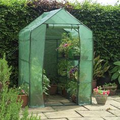 Walk-In Greenhouse with Shelving