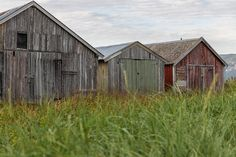 Old boat houses