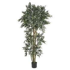 Nearly Natural 5285 Ash Silk Tree, 6-Feet, Green >>> Details can be found by clicking on the image.