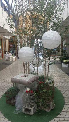 Galleria corte Franceschini.