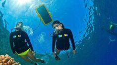 Afternoon Snorkel Tour South Maui