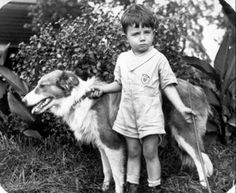 historical+collie+dogs - Google Search
