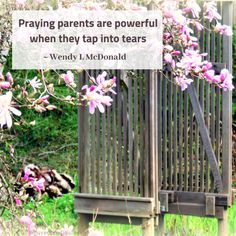 tears: tapping into tears as a healthy way to live, love and pray – Beloved Prodigal