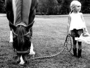 my kids will have a horse