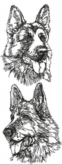 seeing eye dog coloring pages - photo#45