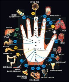 The 3 treatment levels - corresponding therapy 1 You are in the right place about blackpink GIF Here we offer you the most beautiful pictures about the GIF marvel you are looking for. When you examine Acupressure Treatment, Acupressure Points, Massage Tips, Massage Therapy, Les Chakras, Mudras, Reflexology Massage, Hand Therapy, Qigong