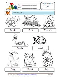 Teaching-Frenzy: Pets - Worksheet
