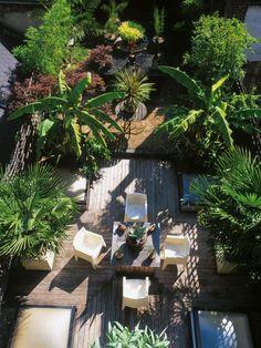 Prefect Outdoor Dinning Tropical Garden