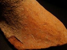Bruchstück einer antiken Keramik aus Persepolis.