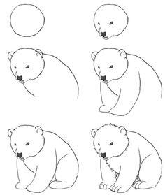Easy drawings of bears easy drawings doodle drawings easy animal drawings polar bear cartoon polar bears . Doodle Art, Doodle Drawings, Animal Drawings, Easy Drawings, Drawing Sketches, Pencil Drawings, Sketching, Drawing Animals, Polar Bear Drawing