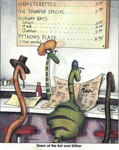Down at the Eat and Slither Far Side Cartoons, Far Side Comics, Funny Cartoons, Funny Animal Memes, Funny Animal Pictures, Funny Images, Animal Pics, Funny Pics, Hilarious