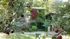 Fotos de El Moli de la Vila - Casa rural en Sant Pere Despuig (Girona) http://www.escapadarural.com/casa-rural/girona/el-moli-de-la-vila/fotos#p=544bed6a150bc