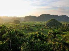 Go bird watching, hiking, or rock climbing in the Viñales Valley.