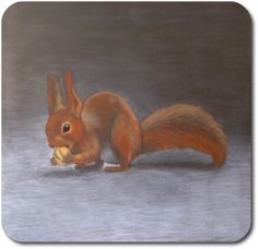 Waldorf ~ 4th grade ~ Human & Animal ~  Squirrel ~ chalkboard drawing ~ http://www.waldorf-ideen-pool.de/index.php?aid=2600
