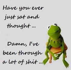Well Kermit, thinking of it all will only bring more shit to your life, so just gotta run the show.
