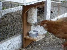 Egg Shell dispenser for my chickens! Cute Chicken Coops, Chicken Cages, Chicken Garden, Chicken Life, Chicken Coop Designs, Backyard Chicken Coops, Chicken Coop Plans, Raising Backyard Chickens, Keeping Chickens