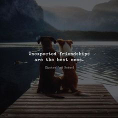 New Quotes Love Best Friend Relationships Ideas Besties Quotes, Best Friend Quotes, True Quotes, Words Quotes, Qoutes, Sayings, Bestfriends, Bffs, Funny Quotes