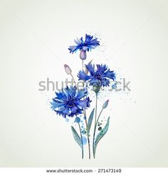 stock-vector-blue-cornflowers-by-watercolor-elements-271473149.jpg (450×470)