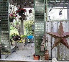 DIY Projects For Home Decorating: My Backyard Beauties