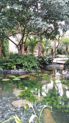Bosque Tropical por Gilberto Elkis