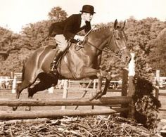 Training Gimlet as a teenager taught Bernie Traurig some of the skills and the system that would set him up for a lifetime of good horsemanship.   The Chronicle of the Horse