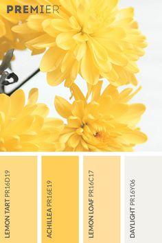 Bright Flora Colour Palette #PaintWithPREMIER