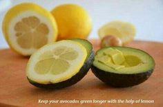 Keep avocados fresh until lunch!