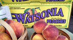 Look for Watsonia Farms Peaches at Area Farmers Markets Through Labor Day -  Eat Now or Put Up Some for Later
