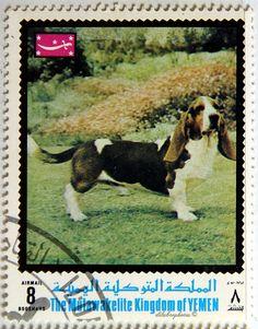 Mutawakelite Kingdom of Yemen. 8.
