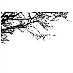 Classic Style Black Branches PVC Plane Wall Stickers ($8.48) ❤ liked on Polyvore featuring home, home decor, wall art, wall stickers, branch home decor and black home decor