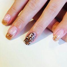 leopard, gold, glitter