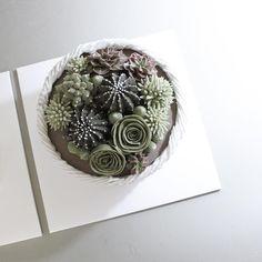 다육이 원데이는 바스켓 파이핑 ,다육이선인장 5종 파이핑 입니다 . 이건 the flower company의 정규 수강생 분이 하신 작품  #flowercake#flower#cake#baking#buttercream#theflowercompany#instacake#cakeicing#blossom#bouqet#peony#anemone#플라워케이크#플라워케익#플라워레슨#케익#케익스타그램#꽃스타그램#다육식물#다육이#선인장#다육이케이크