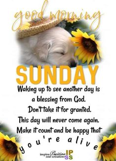 """Thank You God!🙌🏽🙏🏽😇 """"Make it Count and Be Happy That You're Alive! Monday Morning Blessing, Monday Morning Quotes, Good Monday Morning, Good Morning Inspirational Quotes, Monday Quotes, Good Night Quotes, Good Morning Good Night, Morning Board, Monday Blessings"""