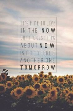 The spectacular now - Quote