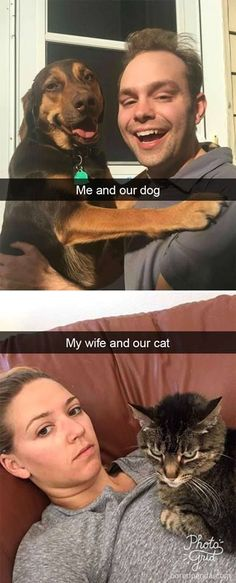 58 New ideas funny animals hilarious lol humor Funny Dog Memes, Memes Humor, Funny Animal Memes, Funny Animal Pictures, Cute Funny Animals, Cat Memes, Funny Cats, Funny Puppies, Puppies Tips