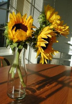 sunflowers - WetCanvas | Reference Image Library