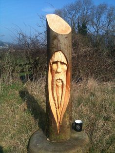 Tree Carvings | tree wizard chainsaw carving